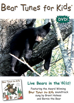 Tunes for bears to dance to essay